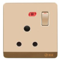15A Wall-Mount Socket Panel Single Outlet with Indicator Light Golden
