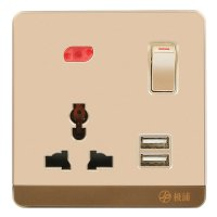 13A Wall-Mount Socket Panel Single Outlet with Two USB Ports and Indicator Light Golden