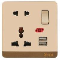 13A Wall-Mount Socket Panel Two Outlest and Two USB Ports with Indicator Light Golden
