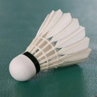 3PCS/SET Durable Badminton Shuttlecocks Top Grade Natural Goose Feather Ball